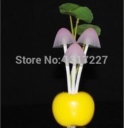 Найти ещё Ночные светильники Сведения о Горячая распродажа электрической индукции мечта гриб гриб лампы, из светодиодов лампы 220 В 3 светод., гриб лампы из светодиодов ночные огни бесплатная отправка, высокое качество led bicycle lamp, Китай lampe led b22 поставщиков, Бюджетный led source из Quanzhou JY Lighting Co.,LTD на Aliexpress.com