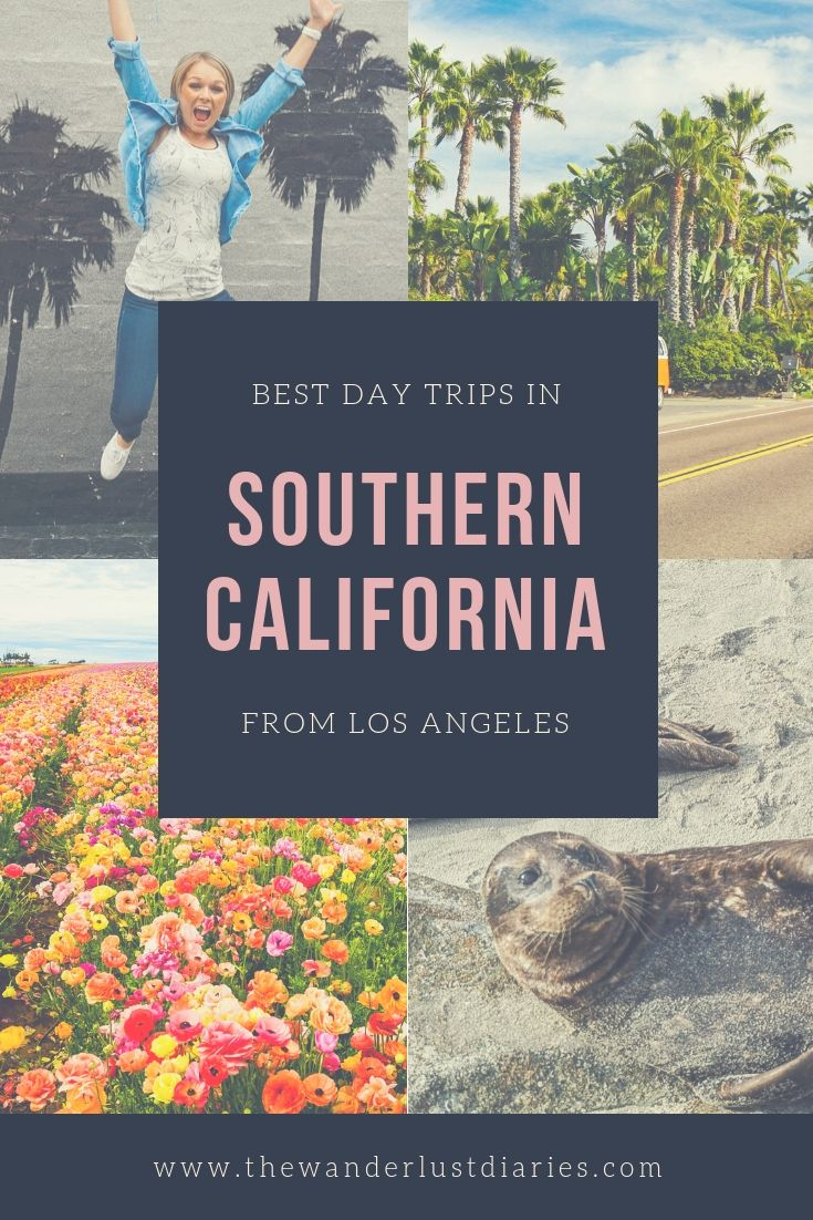 Best Day Trips In Southern California Trip Day Trips California Travel
