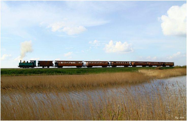 Les trains d'Antan de la baie de Somme.