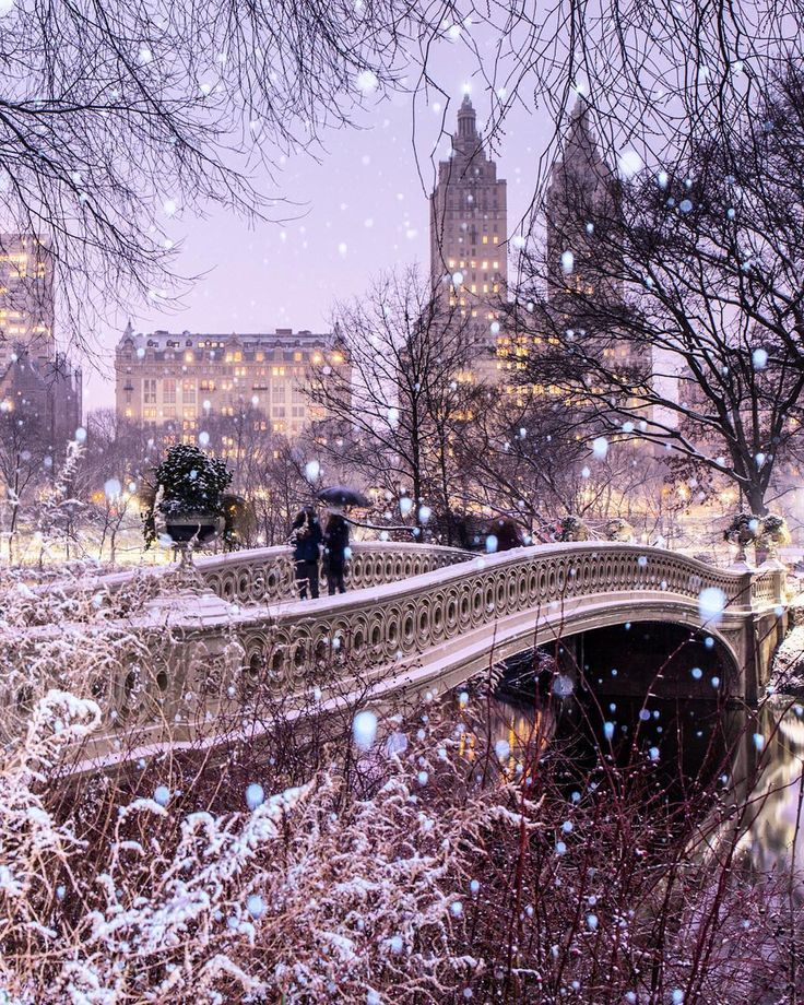 Central Park looking magical on a snowy evening …..