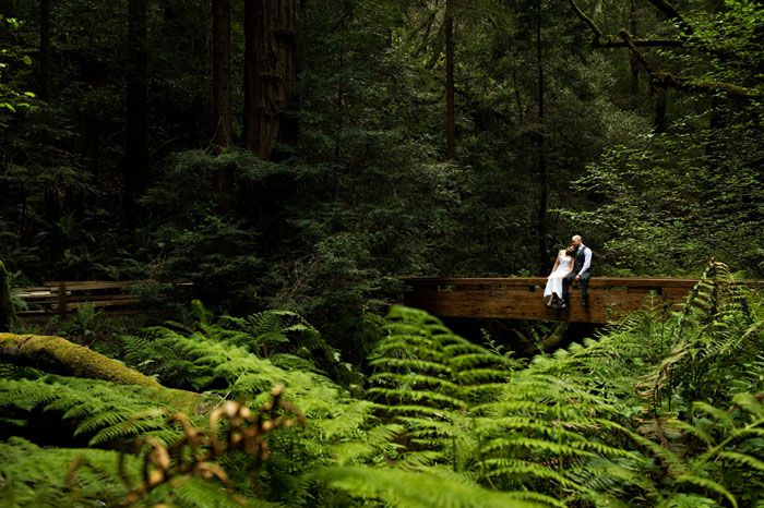 Muir Woods California Wedding Location
