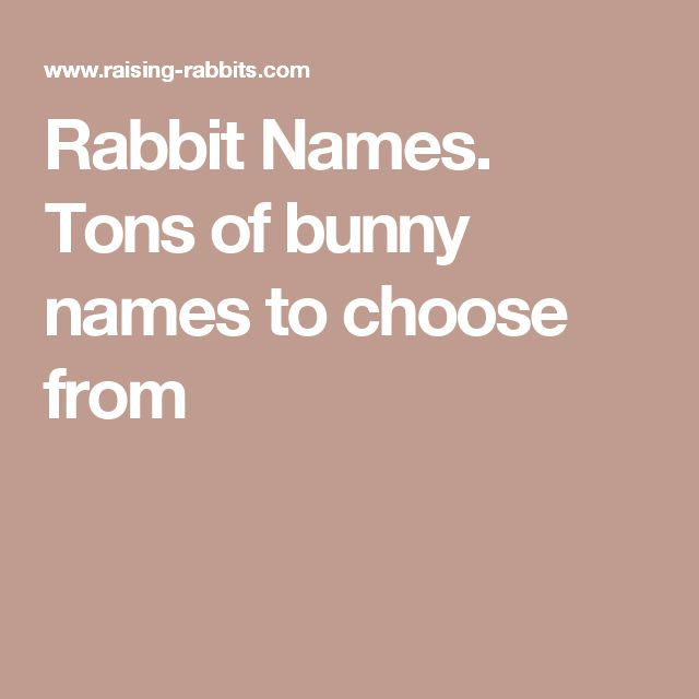 Rabbit Names. Tons of bunny names to choose from