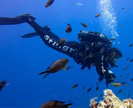 Scuba Diving Weights - http://www.withinthesea.com/scuba-diving/equipment/scuba-diving-weights/