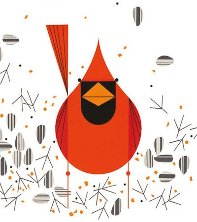 3542 Best Images About Tweet And Cluck On Pinterest