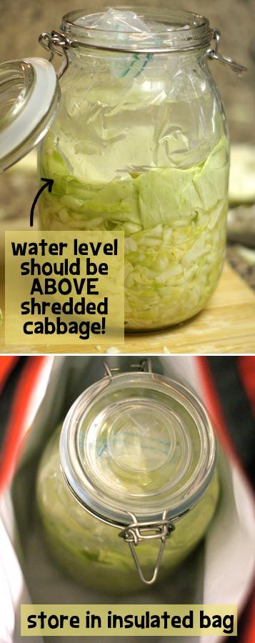 I must say, I'm pretty proud of myself. I made my own raw sauerkraut. I've eaten it. And I'm still ...
