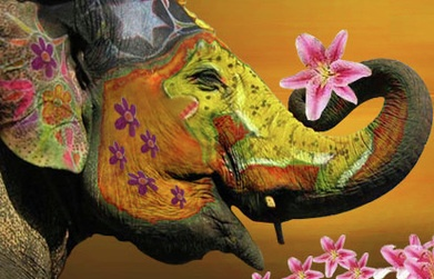 Painted elephant - Carefully selected by GORGONIA www.gorgonia.it