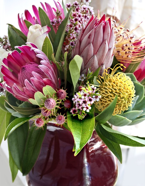 exotic protea, succulents and wax flowers