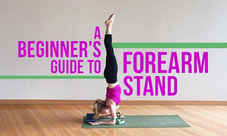 A Beginner's Guide to Forearm Stand http://www.doyouyoga.com/a-beginners-guide-to-forearm-stand-19017/ #yoga