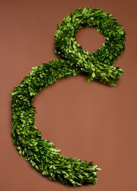 6ft Preserved Boxwood Garland This preserved, genuine Boxwood garland works well as wedding decor or holiday decor. Drape the boxwood garland along a staircase, doorway, or arch. Spray with water once a month to keep the item looking fresh.