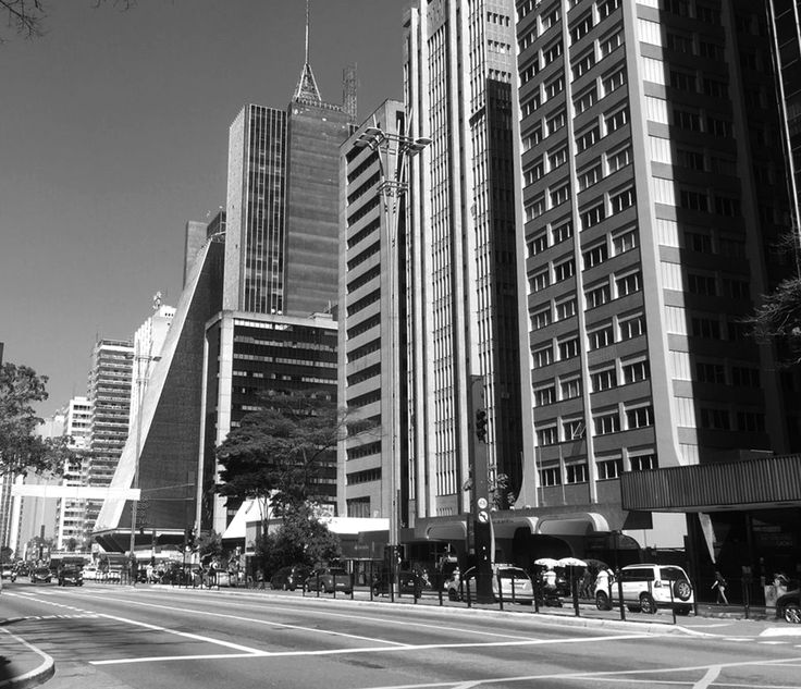 De centro econômico à local de entretenimento, a Av. Paulista se destaca como um dos principais pólos econômicos, abrigando sedes de grandes empresas, hospitais, consulados, hoteis, instituições cientificas, divide espaço com o entretenimento, com grandes shoppings, lojas, restaurantes, e também com o espaço cultural, por exemplo o MASP. Pra você que quer curtir a avenida, pode descer em qualquer uma dessas estações: Brigadeiro, Paulista ou Trianon-MASP.