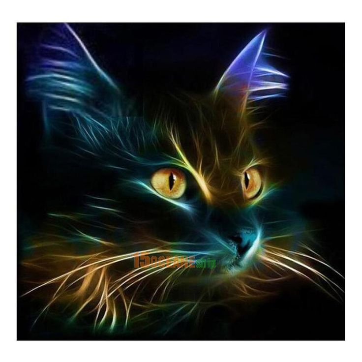5D Cat Square Diamond Embroidery Painting Cross Stitch Diy Craft Home Decor Gift… – Cats