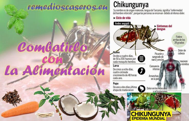 chikungunya combatirlo con la alimentación