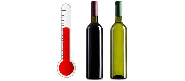 Why Wine Serving Temperatures Matter