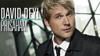 david deyl - YouTube