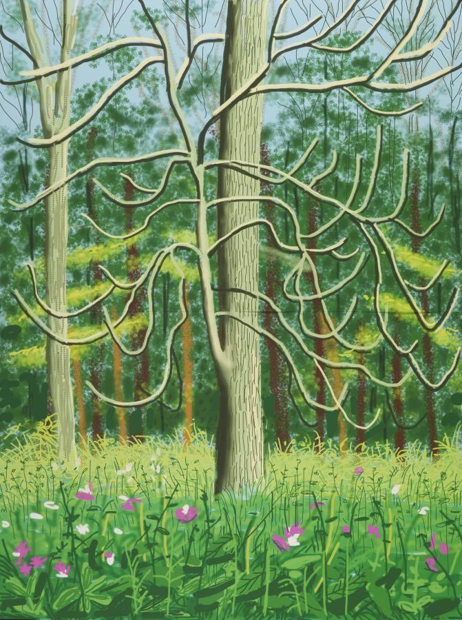 The Arrival of Spring in Woldgate, East Yorkshire  -   David Hockney  2011…