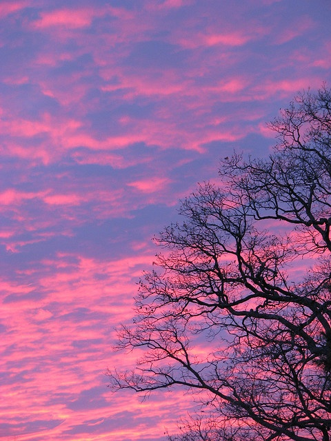 Lovely Pink Clouds At Sunset Bebe Gorgeous Pink