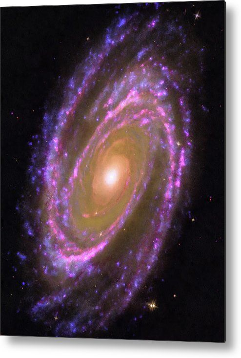 Space Image Metal Print for sale. Bode's Galaxy, Messier 81 - wonderful pink, purple blue and yellow spiral. This image combines data from the Hubble Space Telescope, the Spitzer Space Telescope and the Galaxy Evolution Explorer (GALEX) missions. The image gets printed directly onto a sheet of aluminum. Metal prints are extremely durable and lightweight. The high gloss of the aluminum complements the rich colors of the image. Credit: NASA, ESA. Edit (color saturation, clarity): M. Hauser.