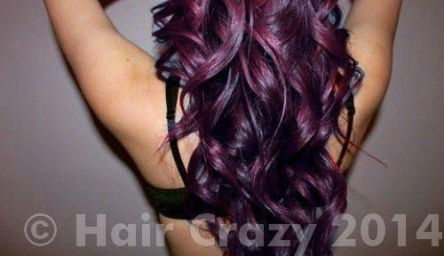 Directions plum and rubine on dark brown hair? - Forums - HairCrazy.
