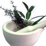 Jarné liečivé bylinky a prvá očistná kúra