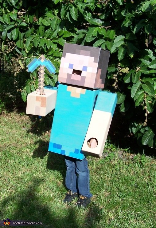 Please vote for my son's costume! Thanks!  Steve from Minecraft - 2012 Halloween Costume Contest