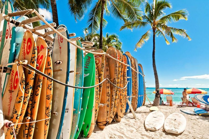 Hawaii. A surfboard is one cheap way to get from point A to B, but there are other practical transport options © Eddy Galeotti / Shutterstock