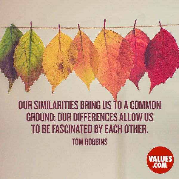 Our similarities bring us to a common ground; our differences allow us to be fascinated by each other. -Tom Robbins