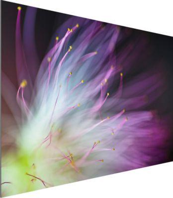 Alu Dibond Bild - Blütenstaub - Quer 2:3 50x75-22.00-PP-ADB-WH Jetzt bestellen unter: https://moebel.ladendirekt.de/dekoration/bilder-und-rahmen/bilder/?uid=153d1a95-b671-59d7-8e48-0c8a218d591b&utm_source=pinterest&utm_medium=pin&utm_campaign=boards #heim #bilder #rahmen #dekoration