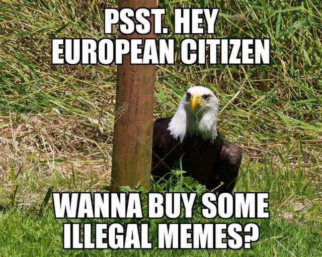 Article 13 Is Making Memes A Rare Comedy For Eu Invest In In This Meme America Memes Funny Memes Best Funny Photos