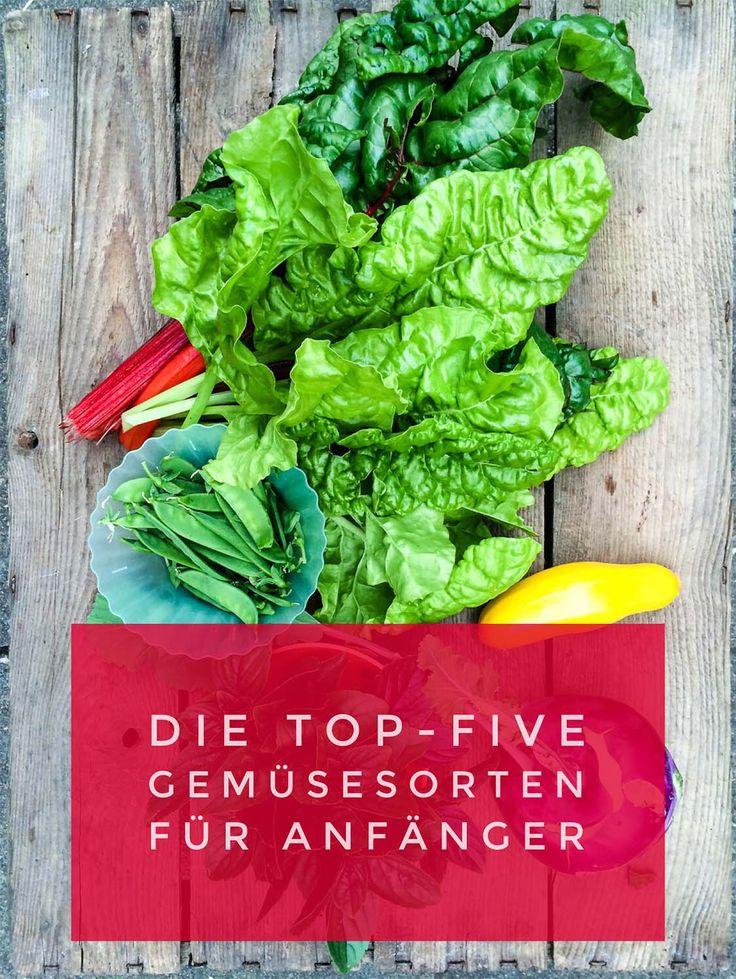 Gemüse für Anfänger - fünf Sorten die immer gelingen   Gemüse anbauen, Gemüse pflanzen, Pflanzen
