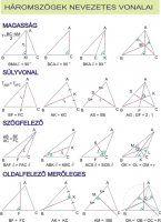 Háromszögek nevezetes vonalai.jpg