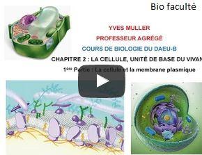 Biologie cellulaire cours