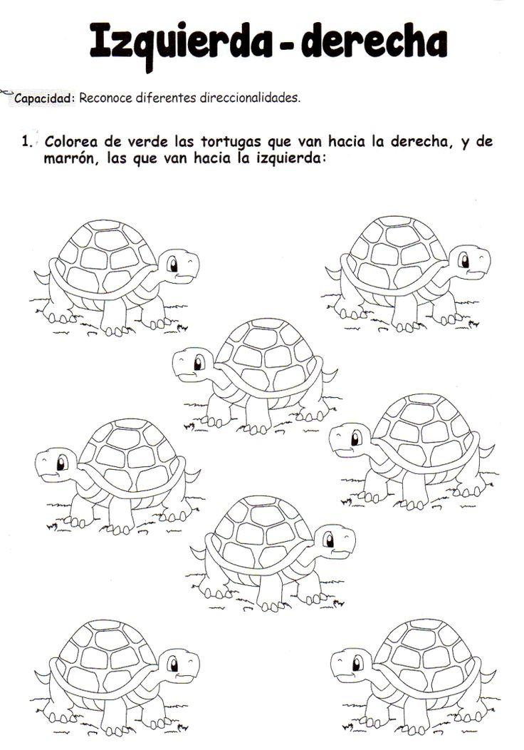 Actividad: Colorea de verde las tortugas que van hacia la derecha, y de marrón, las que van hacia la izquierda.