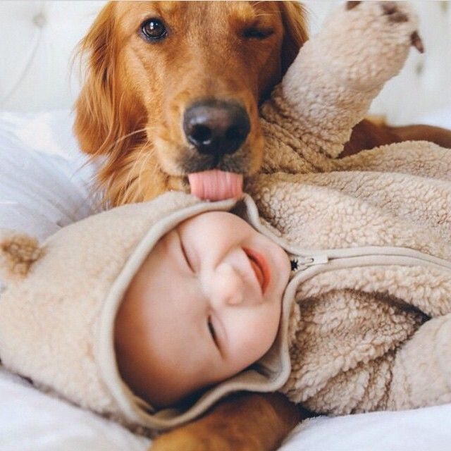Baby getting sugars from doggie.