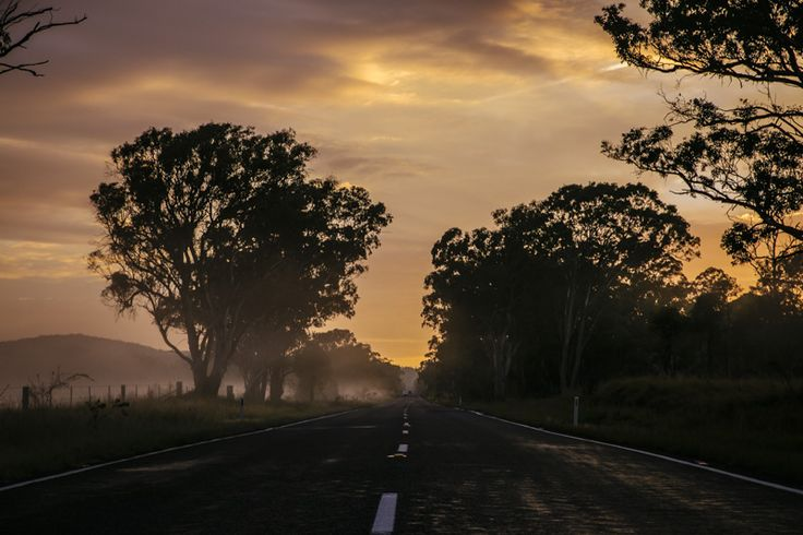 After being awake for 48 hours and driving for 30.5 hours of them, I still had the capacity to take in this spectacular phenomenon that happens every morning - Sunrise through the mist in the bush - highway