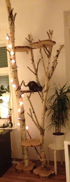DIY cat stratching tree // Katzen Kratzbaum Birke selbst gemacht