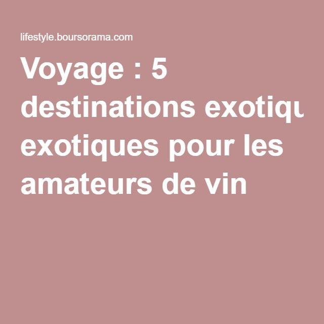 Voyage : 5 destinations exotiques pour les amateurs de vin