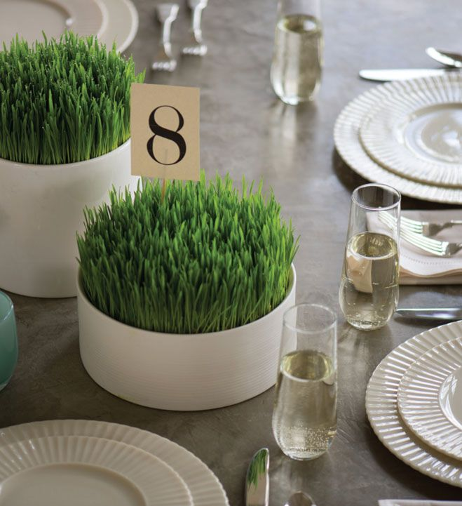 Going Green: Using Wheatgrass as Wedding Reception Centerpieces | Bridal and Wedding Planning Resource for Seattle Weddings | Seattle Bride Magazine