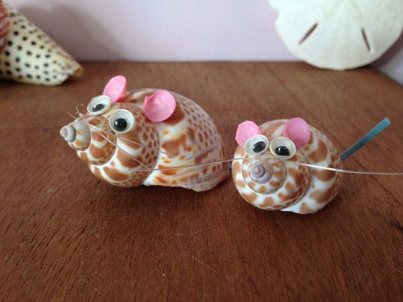 MOUSE SEASHELL ART Souvenir Real Shell by AnnmarieFamilyTree