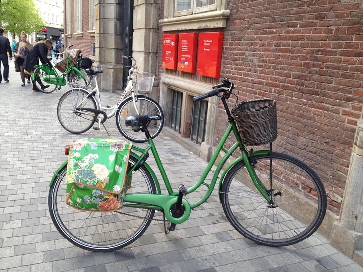 Yeah - a green beauty to keep me company