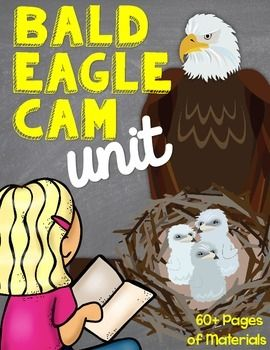 Bald Eagle Cam Unit to use with eagle cameras such as the Decorah Eagle cam. Activities for students across the curriculum. Incorporate Eagle fun into all parts of the day! Other lower elementary resources by this seller:Writing:Narrative WritingInformational WritingFirst Next Then Finally WritingCompare Contrast  2 TextsLetter WritingBeginning Middle EndBiography WritingNarrative/Informational Writing BundleMath:10 more 10 less Missing AddendPlace Value Scavenger HuntWord Problem Unit…
