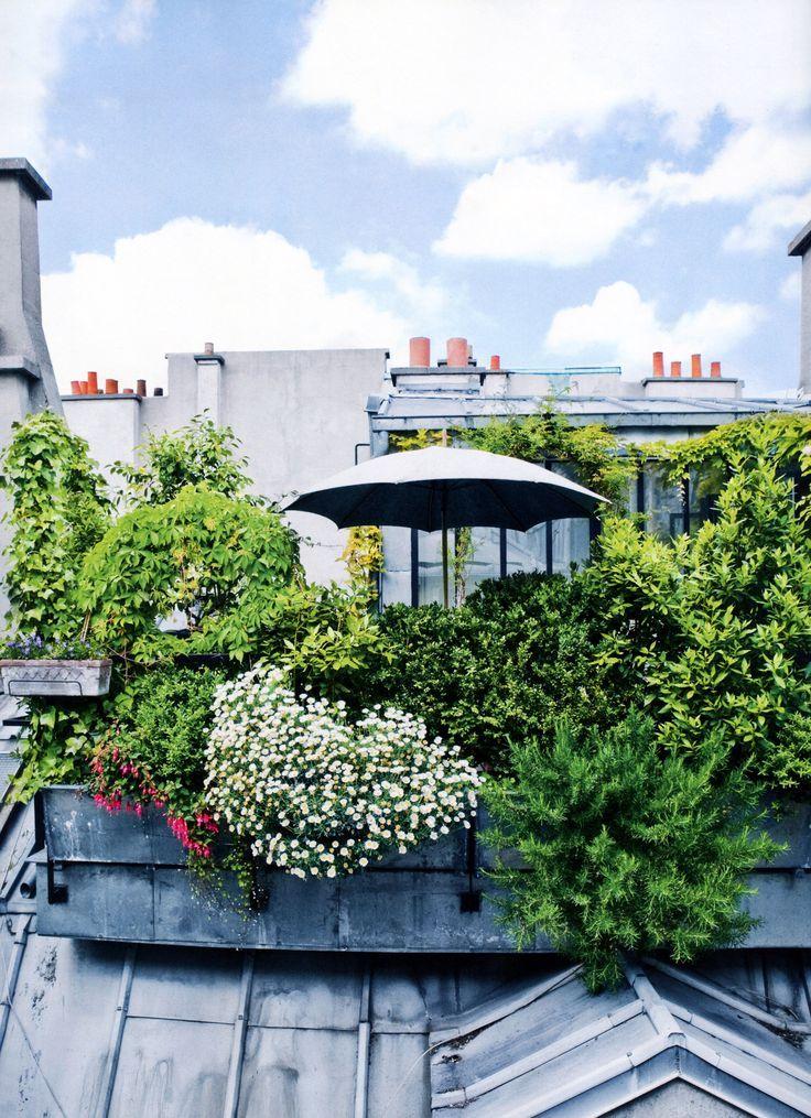 Un jardin sur le toit. A garden on the rooftop. Paris