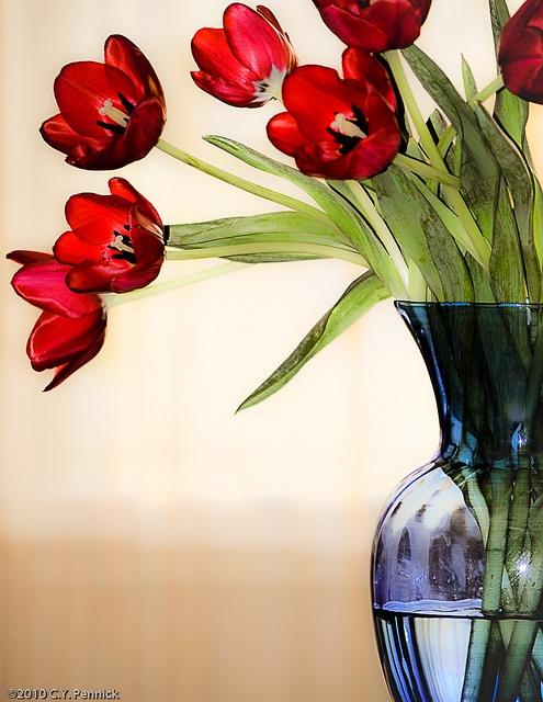 17 best warme kleuren koude kleuren en kleur overloop images on pinterest by the colors and - Koude en warme kleur ...