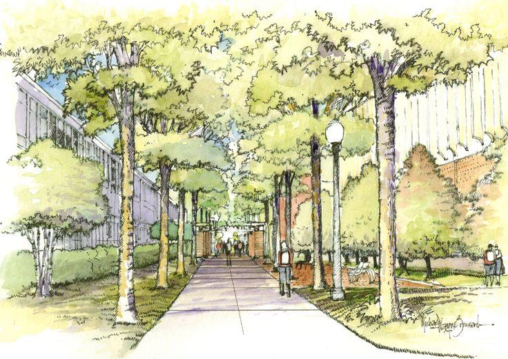main-walkway-tree-lined.jpg (1070×756)