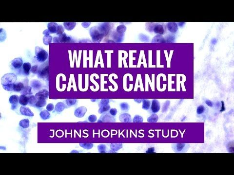Johns Hopkins Study Reveals What Causes Cancer - WATCH VIDEO HERE -> http://bestcancer.solutions/johns-hopkins-study-reveals-what-causes-cancer    *** john hopkins study on cancer causes ***   Scientific Researchers at Johns Hopkins School of Medicine looked at 18 different types of cancers and determined the role of random/replicative mutations of the cancer development. Check out our website and social media. Twitter: Facebook:  Link...