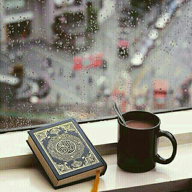 قرآن کریم – آیات ویژه