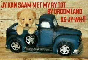 Droomland::::