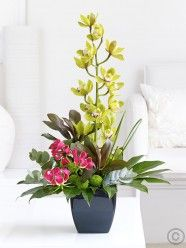 Orchid and Gloriosa Arrangement