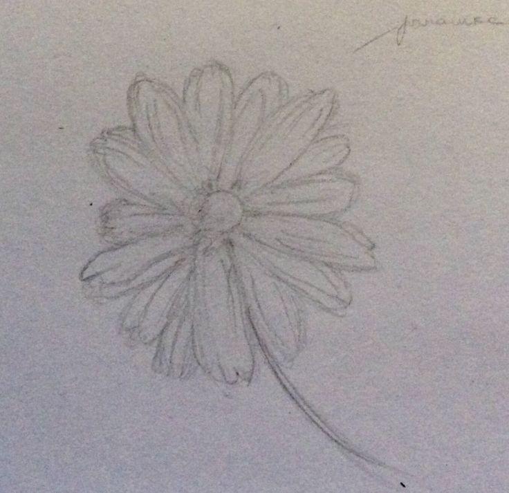 Flower sketch.