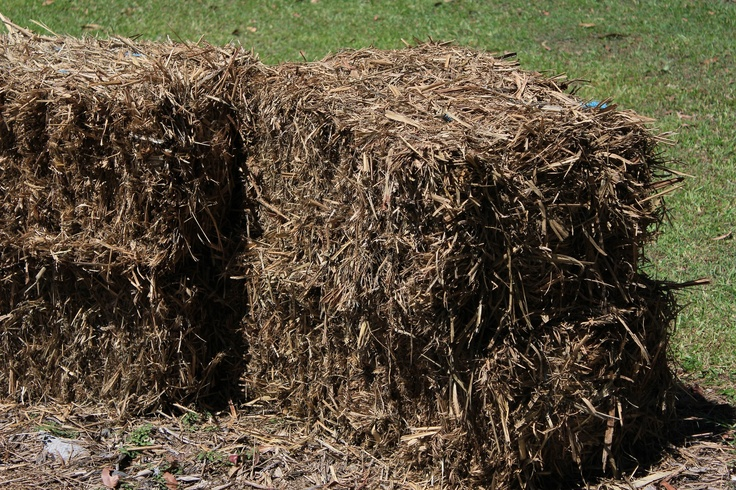 It's handy to have a load of mulch on hand. Bales like these are easy to move around the garden and also make great raised garden beds !