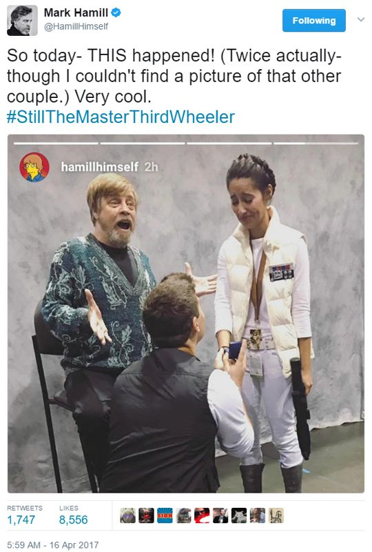 We don't deserve Mark Hamill. Keep on shining, Fandom Dad. PS, Han Solo guy, congratulations YOU ARE DOING IT RIGHT. PPS, Leia chick, I love you for going with the Hoth costume, girllllllllll you are WORKING IT.